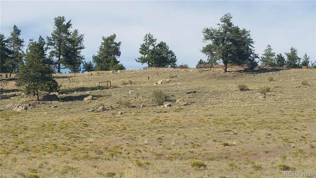 111 Superstition Trail, Hartsel, CO 80449 (#9733645) :: Kimberly Austin Properties