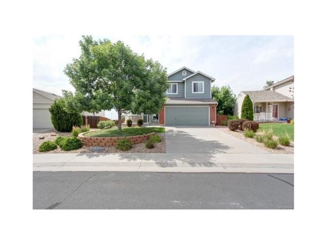 595 Branding Iron Lane, Castle Rock, CO 80104 (MLS #9734072) :: 8z Real Estate