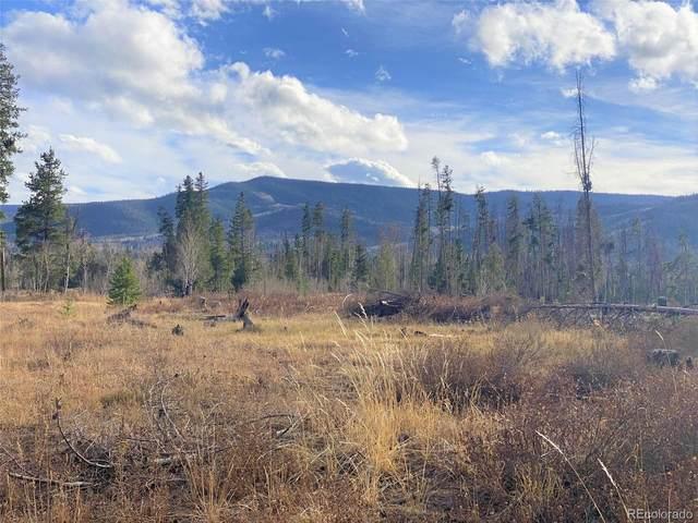 000 Halter Trail, Oak Creek, CO 80467 (#9735152) :: The Healey Group