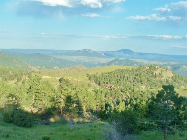 15331 Quandary Peak Road, Pine, CO 80470 (#9735514) :: The DeGrood Team