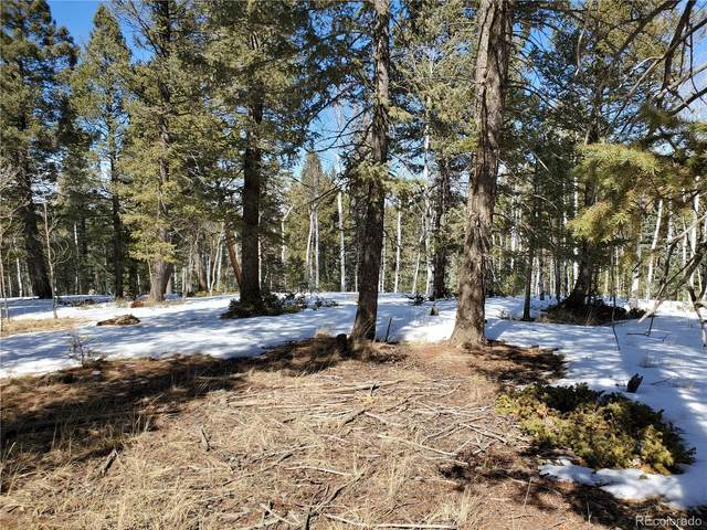 2023 County Road 512, Divide, CO 80814 (MLS #9736185) :: 8z Real Estate
