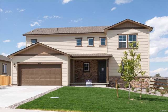 4199 Barbwire Place, Castle Rock, CO 80108 (#9736633) :: The Healey Group