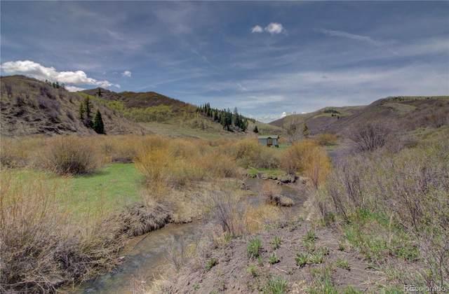 TDB Tbd, Oak Creek, CO 80467 (#9737384) :: The DeGrood Team