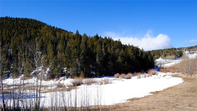 Indian Springs Road, Conifer, CO 80433 (#9740737) :: The Colorado Foothills Team | Berkshire Hathaway Elevated Living Real Estate