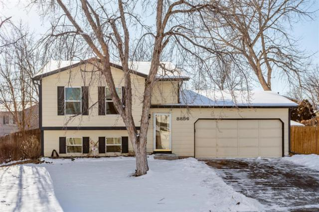 8856 W Teton Circle, Littleton, CO 80128 (#9742370) :: House Hunters Colorado