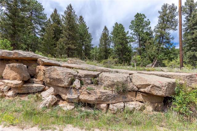 0 S Us Highway 285 Frontage Road, Conifer, CO 80433 (#9743593) :: The Colorado Foothills Team | Berkshire Hathaway Elevated Living Real Estate