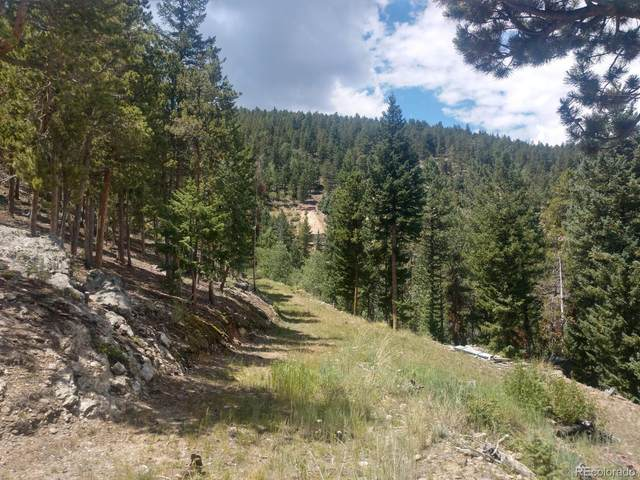 Warren Gulch Road, Idaho Springs, CO 80452 (#9744864) :: Re/Max Structure