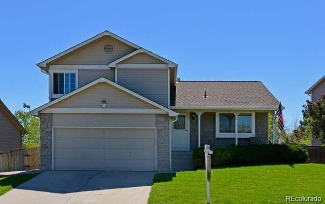 5480 S Youngfield Street, Littleton, CO 80127 (#9744871) :: Re/Max Structure