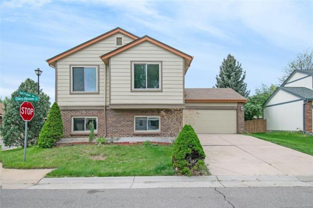 1176 Cherry Blossom Court, Highlands Ranch, CO 80126 (#9745380) :: Colorado Team Real Estate
