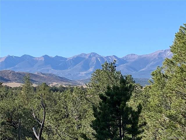 388 Paintbrush Trail, Cotopaxi, CO 81223 (MLS #9746860) :: 8z Real Estate