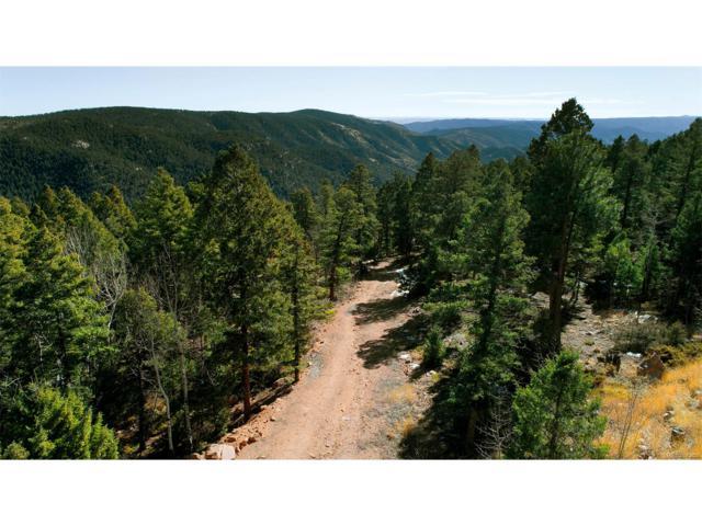 12888 Piano Meadows Drive, Conifer, CO 80433 (MLS #9747690) :: 8z Real Estate
