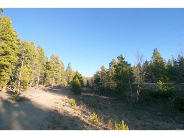 1099 County Road 4, Leadville, CO 80461 (MLS #9751090) :: 8z Real Estate