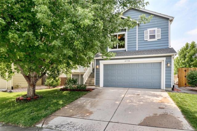 8730 Wildrye Circle, Parker, CO 80134 (#9751184) :: Bring Home Denver