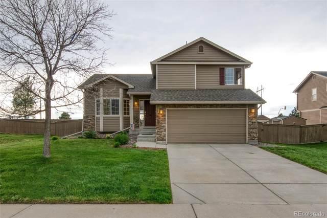 4819 Eckert Street, Castle Rock, CO 80104 (#9751213) :: The Griffith Home Team