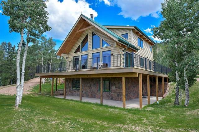 6959 County Road 8, Victor, CO 80860 (#9756691) :: The Gilbert Group
