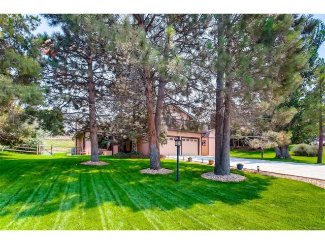6919 Hillside Way, Parker, CO 80134 (MLS #9758148) :: 8z Real Estate