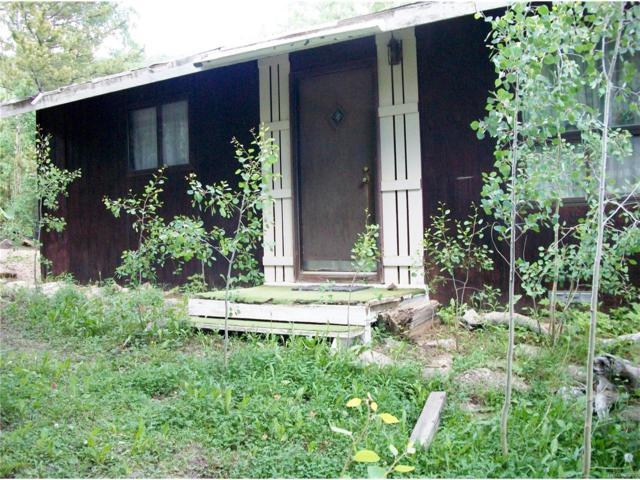 668 Alice Road, Idaho Springs, CO 80452 (MLS #9761633) :: 8z Real Estate
