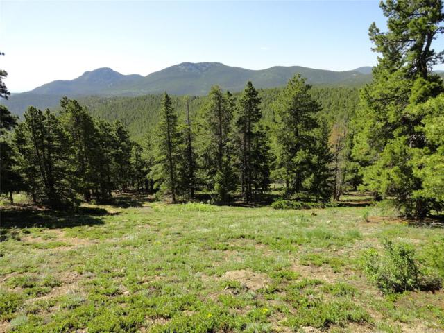 32778 Janelle Lane, Golden, CO 80403 (MLS #9765110) :: 8z Real Estate