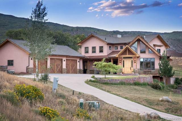 317 Spring View Drive, Glenwood Springs, CO 81601 (MLS #9767079) :: 8z Real Estate