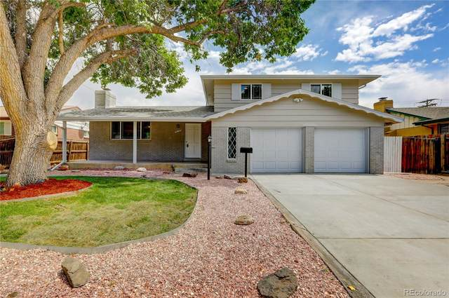 3090 S Golden Way, Denver, CO 80227 (#9769097) :: Chateaux Realty Group