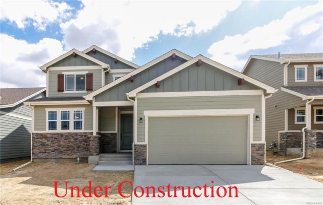 5055 Prairie Lark Lane, Severance, CO 80615 (MLS #9769277) :: Kittle Real Estate