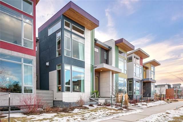 904 Half Measures Drive, Longmont, CO 80504 (MLS #9770316) :: 8z Real Estate