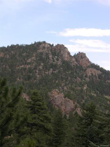 1560 James Canyon Drive, Jamestown, CO 80455 (#9771970) :: The Heyl Group at Keller Williams