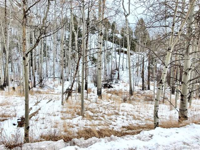 498 Buckhorn Road, Cripple Creek, CO 80813 (MLS #9773613) :: 8z Real Estate