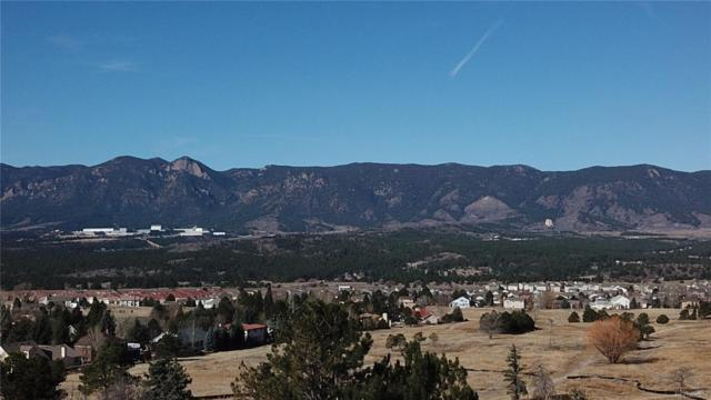 14358 Spyglass Hil Place, Colorado Springs, CO 80921 (#9773769) :: House Hunters Colorado