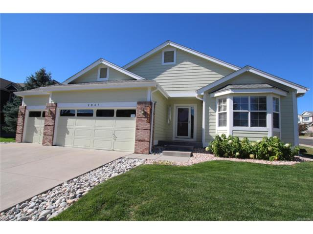 2347 Switch Grass Way, Castle Rock, CO 80109 (#9776357) :: The Thayer Group
