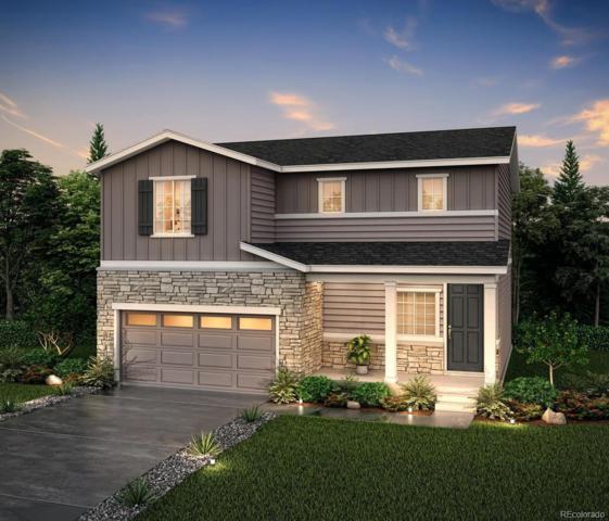 2095 Villageview Lane, Castle Rock, CO 80104 (#9776942) :: House Hunters Colorado