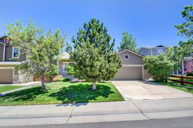 10035 Strathfield Lane, Highlands Ranch, CO 80126 (#9778661) :: Briggs American Properties