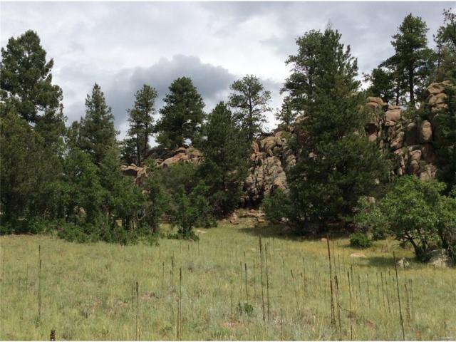 212 Apache Trail, Florissant, CO 80816 (#9779625) :: Wisdom Real Estate