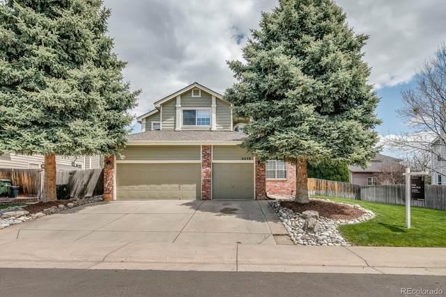 9238 Wolfdale Drive, Lone Tree, CO 80124 (#9783802) :: Briggs American Properties