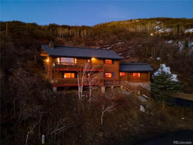 2920 Ski Trail Lane, Steamboat Springs, CO 80487 (#9785966) :: Stephanie Fryncko | Keller Williams Integrity