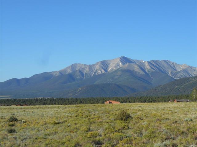 30642 Valley View Drive, Buena Vista, CO 81211 (MLS #9789867) :: 8z Real Estate