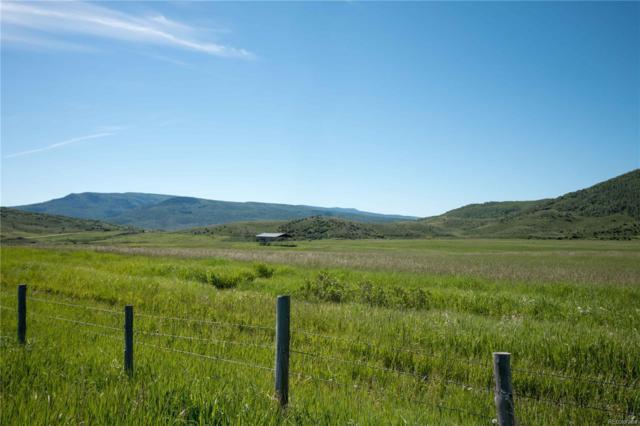 503 Bell Avenue, Oak Creek, CO 80467 (MLS #9790313) :: 8z Real Estate