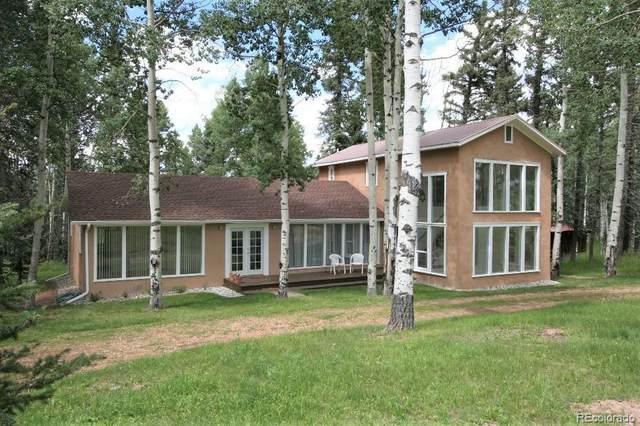 789 Ridge Drive, Divide, CO 80814 (MLS #9790866) :: 8z Real Estate