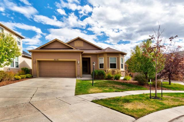 5015 Farris Creek Court, Colorado Springs, CO 80924 (#9793068) :: The DeGrood Team