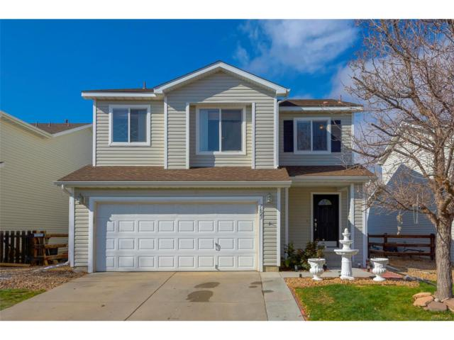 7623 Brown Bear Court, Littleton, CO 80125 (#9794748) :: The Sold By Simmons Team