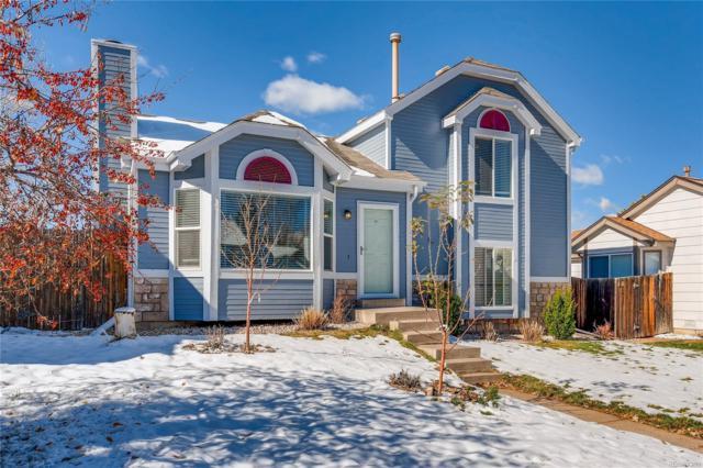 9 Quicksilver Avenue, Castle Rock, CO 80104 (#9798297) :: Bring Home Denver