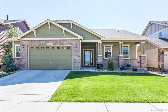 5668 Edgevale Street, Timnath, CO 80547 (#9799773) :: The Dixon Group