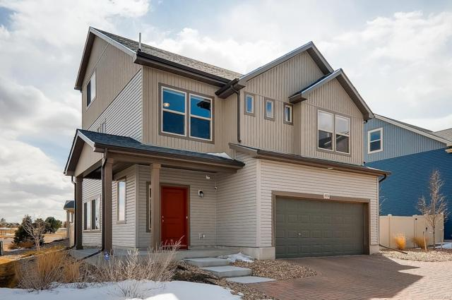 4856 Halifax Court, Denver, CO 80249 (MLS #9801464) :: Kittle Real Estate