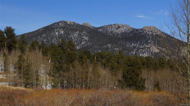 586 N Dory Lakes Drive, Black Hawk, CO 80422 (#9802187) :: Compass Colorado Realty