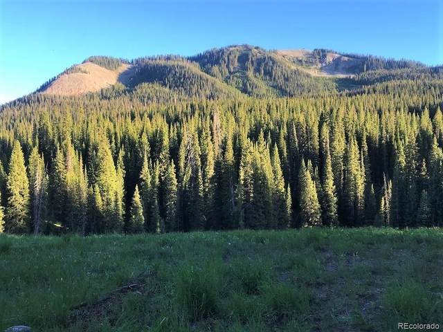 Forest Service Road 730, Crested Butte, CO 81224 (MLS #9802192) :: 8z Real Estate