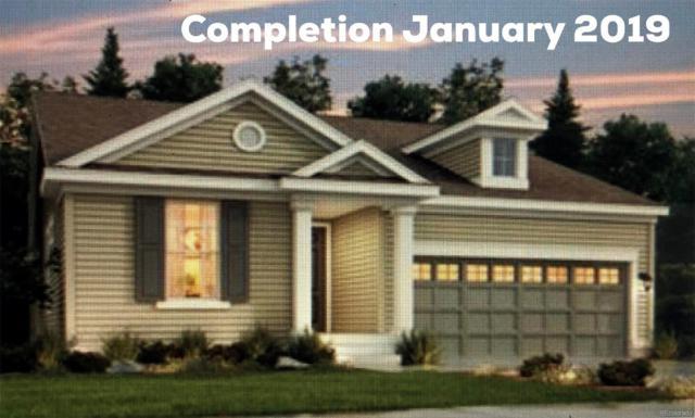 16088 Azalea Avenue, Parker, CO 80134 (#9804885) :: The HomeSmiths Team - Keller Williams