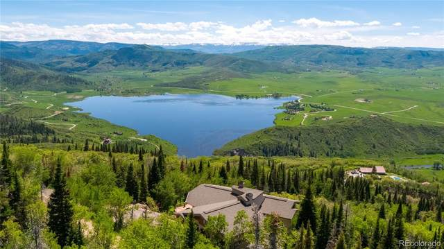 31165 Star Ridge Rd Road, Steamboat Springs, CO 80487 (#9807525) :: The Healey Group