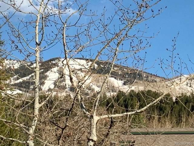 642 Meadowbrook Circle, Steamboat Springs, CO 80487 (#9809779) :: HomeSmart