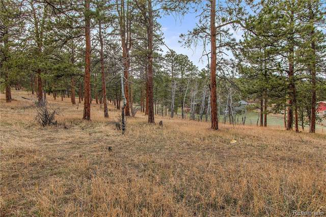 29999 Gigi Drive, Evergreen, CO 80439 (#9811838) :: Mile High Luxury Real Estate