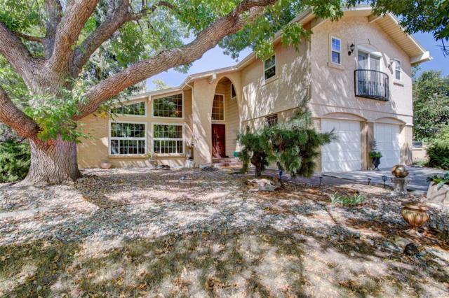 1463 E Easter Circle, Centennial, CO 80122 (#9815661) :: Wisdom Real Estate